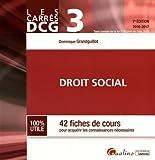 DCG 3 Droit social : 42 fiches de cours pour acquérir les connaissances nécessaires