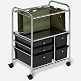 Rolling Drawer Organizer Cart Cabinet Organizer Rails Open Rolling Metal Mobile Large Home Storage Laundry Office Tall & eBook by MSS