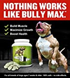 Bully Max The Ultimate Canine Supplement 60