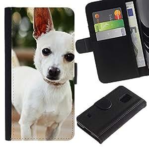 Samsung Galaxy S5 V SM-G900 - Dibujo PU billetera de cuero Funda Case Caso de la piel de la bolsa protectora Para (Cute Chihuauah Dog)
