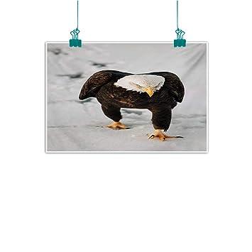 Amazon.com: Mkedci - Cuadro decorativo sin marco ...