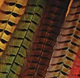 Hareline Ringneck Pheasant Tail Feathers Red - Fly Tying