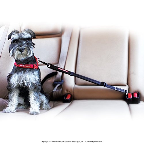 EzyDog CLICK - Best Dog Seat Belt Car Harness Attachment for Dogs...