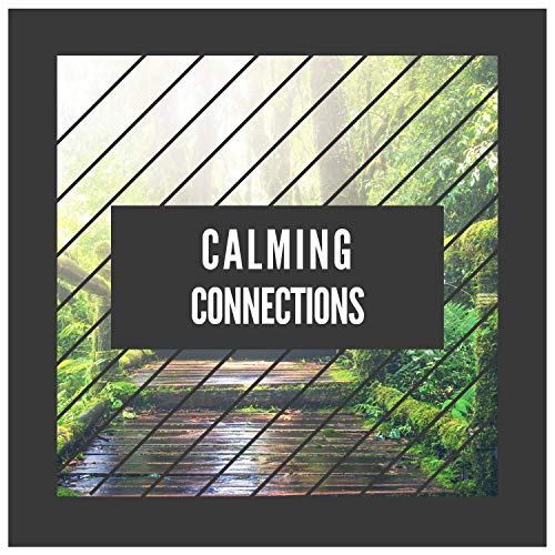 Bowl Connection - Calming Connections
