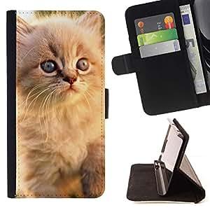 Momo Phone Case / Flip Funda de Cuero Case Cover - Gato persa azul Gatito Eyes White; - Sony Xperia Z3 Compact