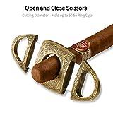 CIGARLOONG Cigar Cutter Stainless Steel Bronze