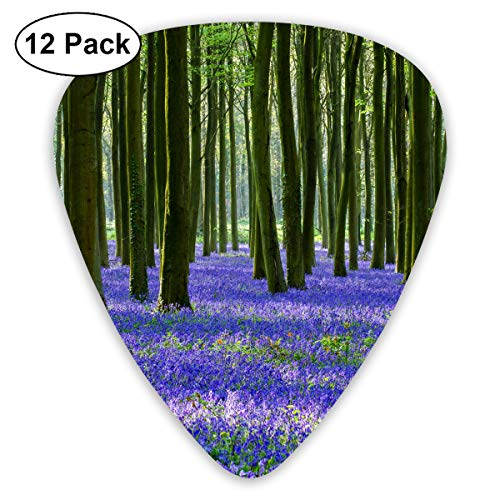 Violet Lavender Sage in The Green Jungle Ultra Light 0.46 Medium 0.73 Heavy 0.96mm Printed Round Flat Soft Plastic Jazz Electric Acoustic Bass Guitar Pick Accessories Variety Pack