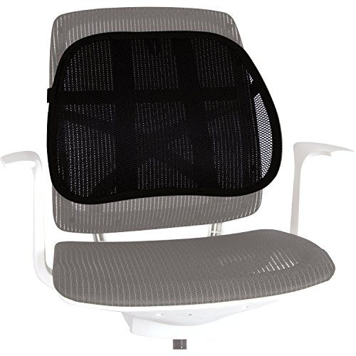 Fellowes Office Suites Mesh Back Support (8036501) by Fellowes