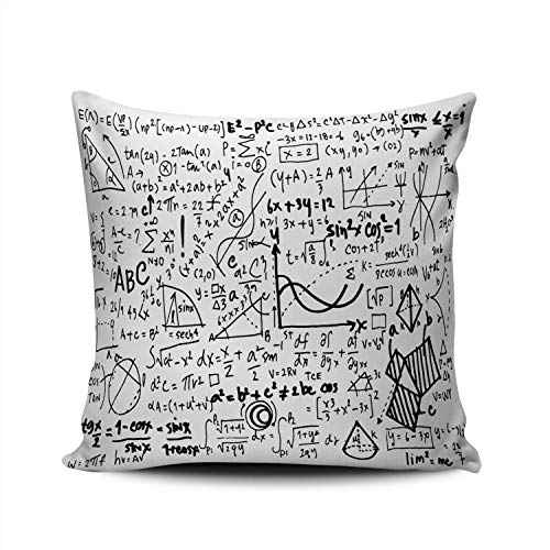 OEDRAY Home Throw Pillow Case Letter Linear Mathematics Education Geometrical Formulas Square Decorative Pillowcase Cushion Cover Both Sides Same Colored Printing 18x18 Inch (1-Pack) (Using Linear Equations To Solve Problems Calculator)