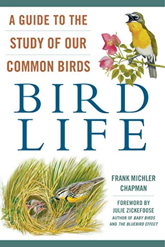 (Bird Life: A Guide to the Study of Our Common Birds)