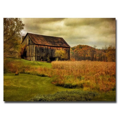 Trademark Fine Art Old Barn on Rainy Day by Lois Bryan Canvas (Rainy Day Clay)