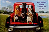 We're Grateful to have a Terrific Boss Like You - Happy Boss's Day Greeting Card w/ Dogs - Cute Funny