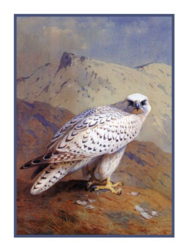 Gyr Falcon by Naturalist Archibald Thorburn's Bird Counted Cross Stitch Chart