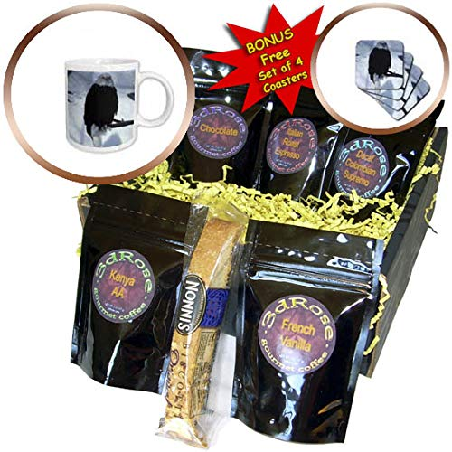 (3dRose TDSwhite - Christmas Holidays Xmas - Winter Eagle Perches On Branch - Coffee Gift Baskets - Coffee Gift Basket (cgb_295993_1))
