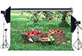 Gladbuy 7X5FT Red Apples Spring Backdrop Vintage Wood Basket Green Grass Meadow Nature Autumn Harvest Vinyl Photography Background for Baby Lover Wedding Party Portraits Photo Studio Props MP621