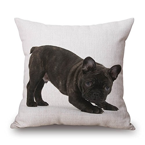 """Price comparison product image Happy Cool 18""""x 18"""" Cotton Linen Square Pop Dog Home Office Indoor Decorative Dinning Room Kitchen Chair Seat Sofa Chair Seat Back Case Home Pillowcase Cover for Family Room Pattern-6"""