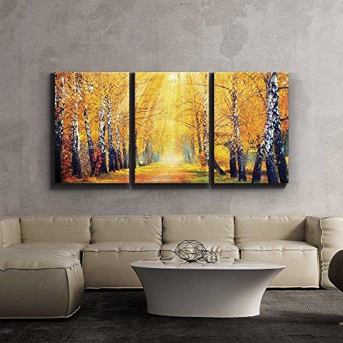Print Contemporary Art Wall Decor Sunny Autumn day trees line a path Artwork Wood Stretcher Bars x3 Panels