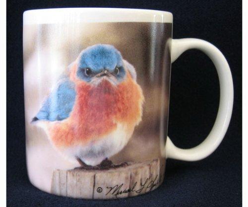 Songbird Essentials SEEK7039 11oz Mad Bluebird Mug (Set of 1)