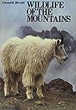 Wildlife of the Mountains, Edward R. Ricciuti, 0810917572