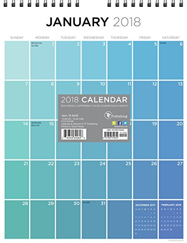 2018 Color Monthly Grid Appointment Wall Calendar -