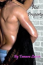 Hot Property (Kingston Bros Book 2)