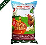 Amzey Dried Mealworms 11 LBS - 100% Natural for Chicken...