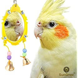 Fancy Bird Toy Mirror with Bells - Promotes Mental & Physical Stimulation - Colorful, Attractive & Easy to Install - Strong, Safe Plastic Edging & Beads - for Budgies, Canaries, Finches & Lovebirds