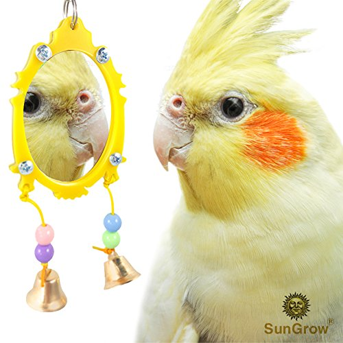 SunGrow Fancy Bird Toy Mirror with Bells - Strong, Safe Plastic Edging and Beads - Colorful, Attractive and Easy to Install Pet Toy from Sized for Parakeets, Cockatoos, Canaries and Pet Birds
