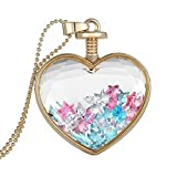 Women Dry Flower Heart Glass Wishing Bottle Pendant - Best Reviews Guide