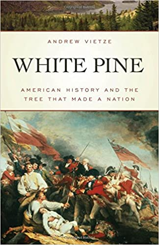 Image result for white pine vietze