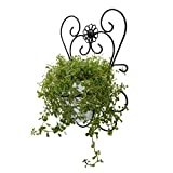 GrayBunny gbHome GH-6774 Ornate Decorative Metal Wall Mounted Plant Holder With Floating Ceramic Pot, Cast Iron Design