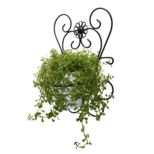 GrayBunny gbHome GH-6774 Ornate Decorative Metal Wall Mounted Plant Holder With Floating Ceramic Pot, Cast Iron Design by GrayBunny