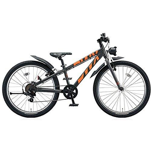 ブリヂストン(BRIDGESTONE) BWX ストリート BXS076 ガンメタリック/オレンジ 20インチ ジュニアバイク B01IK8E52W