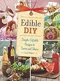 Edible DIY, Lucy Baker, 0762444886