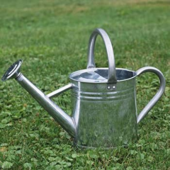 gardeners select aw3005pg watering can galvanized