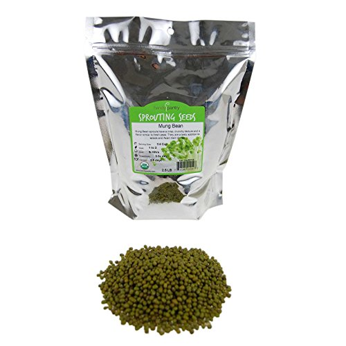 Mung Bean Sprouting Seed: 2.5 Lb - Organic, Non-GMO - Handy Pantry Brand - Dried Moong Beans for Sprouts, Garden Planting, Chinese & Asian Cooking, Soup & More -