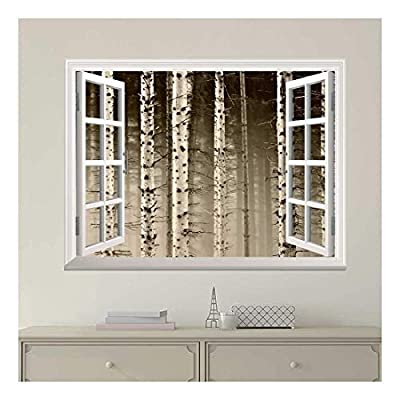 Modern White Window Looking Out Into a Foggy Sepia Forest - Wall Mural, Removable Sticker, Home Decor - 24x32 inches