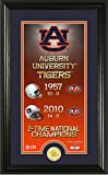 NCAA Auburn Tigers Legacy Supreme Minted Coin Panoramic Photo Mint, 24'' x 16'' x 4'', Bronze