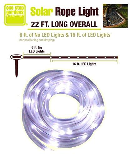 50 Led C 7 Lights in US - 7