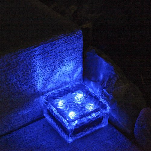 Blue Led Solar Path Lights in Florida - 5