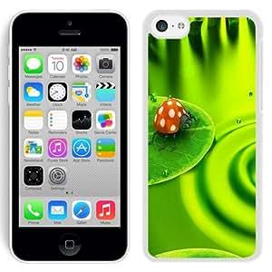 NEW Fashion Custom Designed Cover Case For iPhone 5C Ladybug White Phone Case