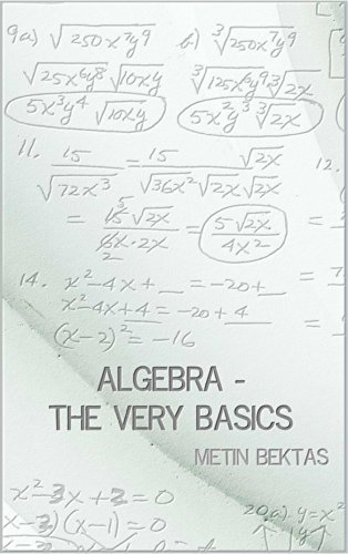 Algebra - The Very Basics by [Bektas, Metin]