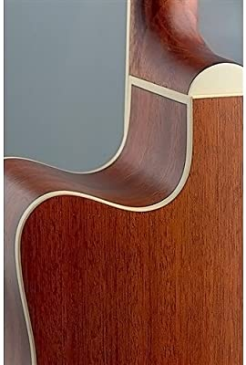 James Neligan ASY-Electro Acústica Guitarra DCE: Amazon.es ...
