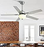 Huston Fan Silver 42'' Mute Stainless Steel Ceiling Fan Light Remote Control Restaurant Modern Home Simple Living Room LED Chandelier With 5 Reversal Blades