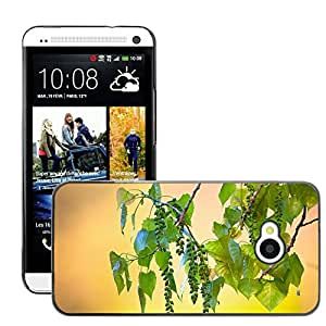 Super Stellar Slim PC Hard Case Cover Skin Armor Shell Protection // M00050309 aero macro wild fruits tree // HTC ONE M7