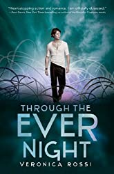 Through the Ever Night (Under The Never Sky Trilogy Book 2)