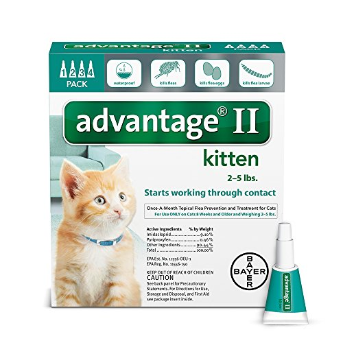 bayer-advantage-ii-kitten-flea-treatment-for-kittens-2-5-lb-4-doses