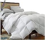 Oversized King Comforters 120x120 Super King Oversized California King Down Alternative Comforter (120