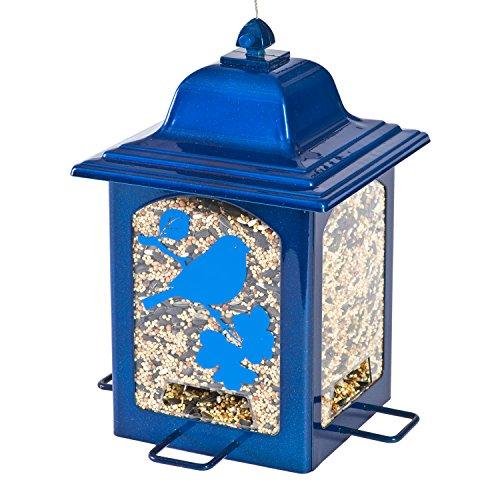 blue sparkle lantern wild bird