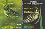 Mayflies - Fly Fishing Guide to Imitating Aquatic Insects